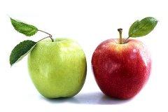 Яблоко - описание, польза и вред
