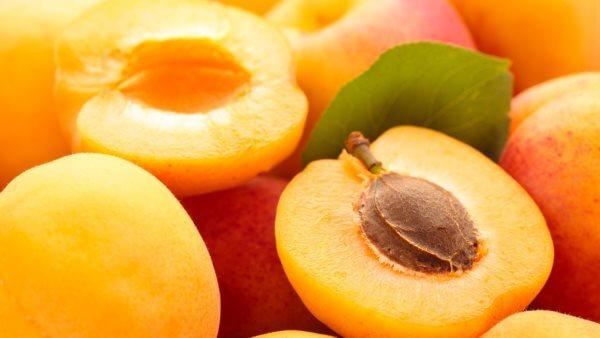 Свойства абрикосов: польза и вред