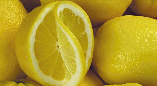Фото: Лимон в разрезе