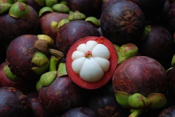 Фото: как выглядит фрукт Мангустин