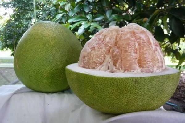 Фото: фрукт Помело в разрезе