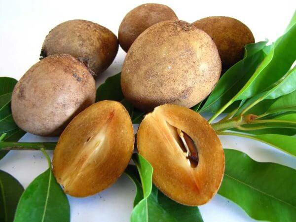 Фото: фрукт Саподилла в разрезе