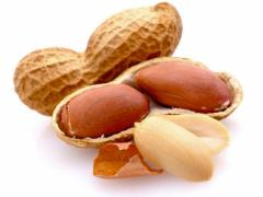 Пекан - орех похожий на грецкий, что за плод